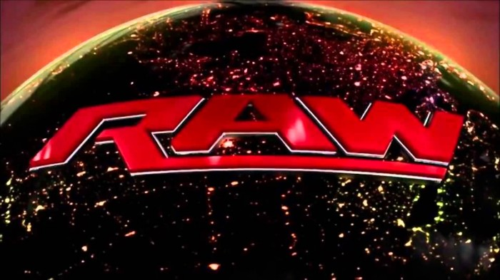WWE RAW: REPORT 29/06/15
