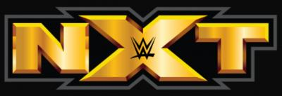 Talento di NXT sviene sul ring *VIDEO*