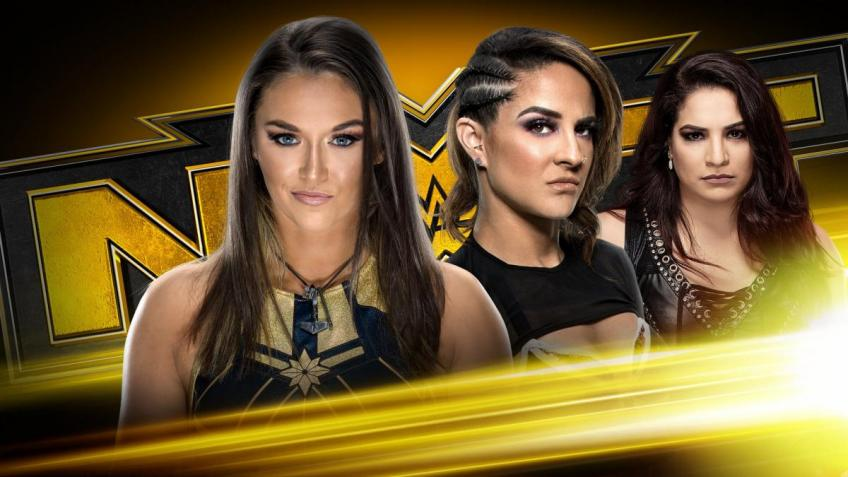 WWE NXT report - 04/03/2020 - parte I - Inside the cage