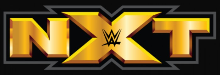 Una Superstar di NXT arrestata la scorsa estate